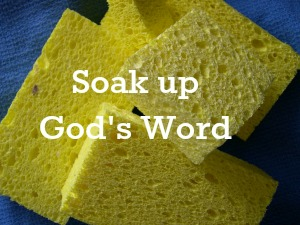 Soaking Up God's Word | KingdomNomics.com